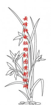 梅�m竹菊-白描�D-�m草-mlxj002-梅�m竹菊雕刻�D案